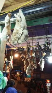 Foetus de lama au mercado de las brujas