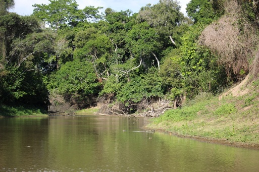 Rivière Yacuma de jour