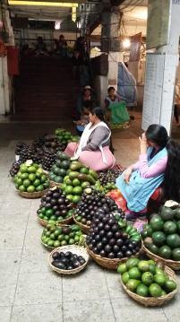 Avocats au marché