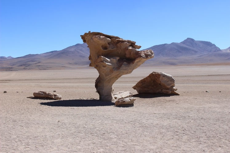 Arbol de Piedra, désert de Siloli, Bolivie
