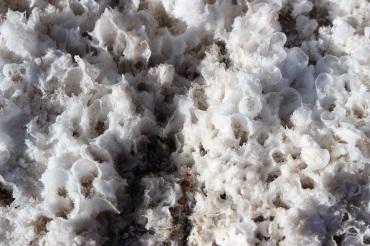 Croûte de sel