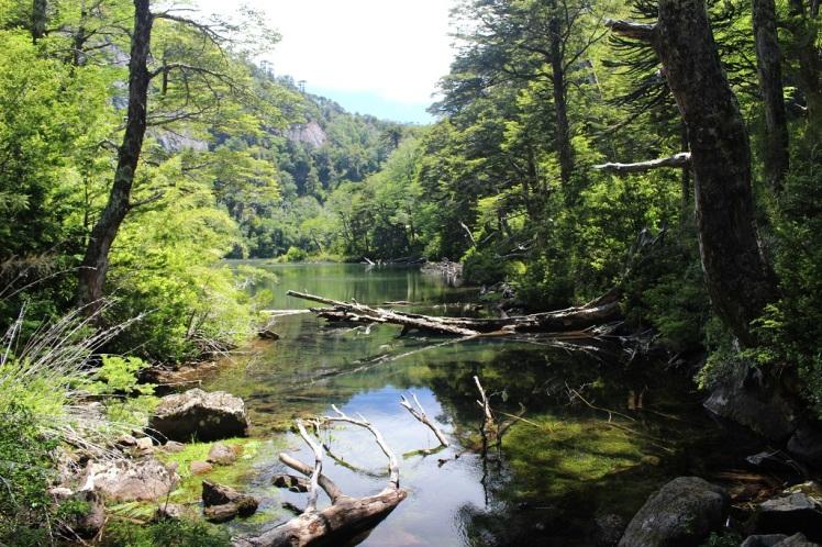 Lago Chico, parque nacional Huerquehue
