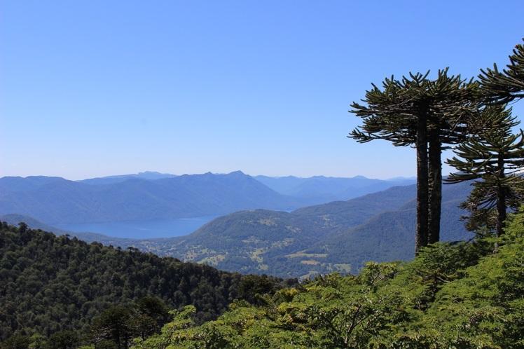 Vue sur le lac Caburga depuis le sommet du Cañi