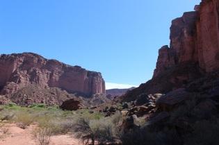 Le canyon de Talampaya