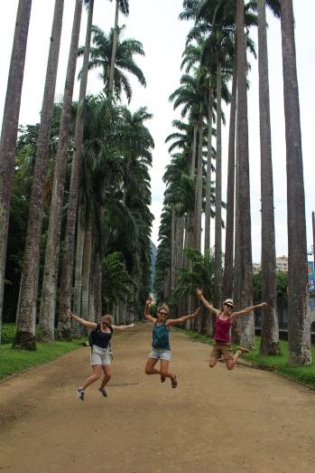 L'allée des palmiers, Jardim Botanico