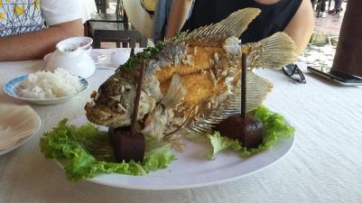 Le poisson chanceux