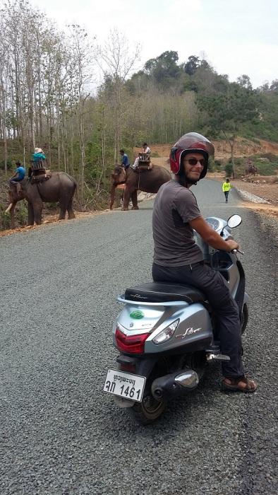 On a la surprise de tomber sur des éléphants