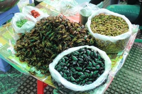 Les insectes à déguster