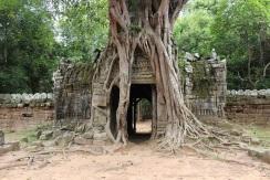 Le fond du temple